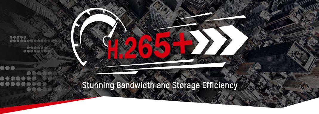 H-265+.jpg